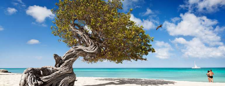 Aruba. L'isola dai due volti e dalle due anime